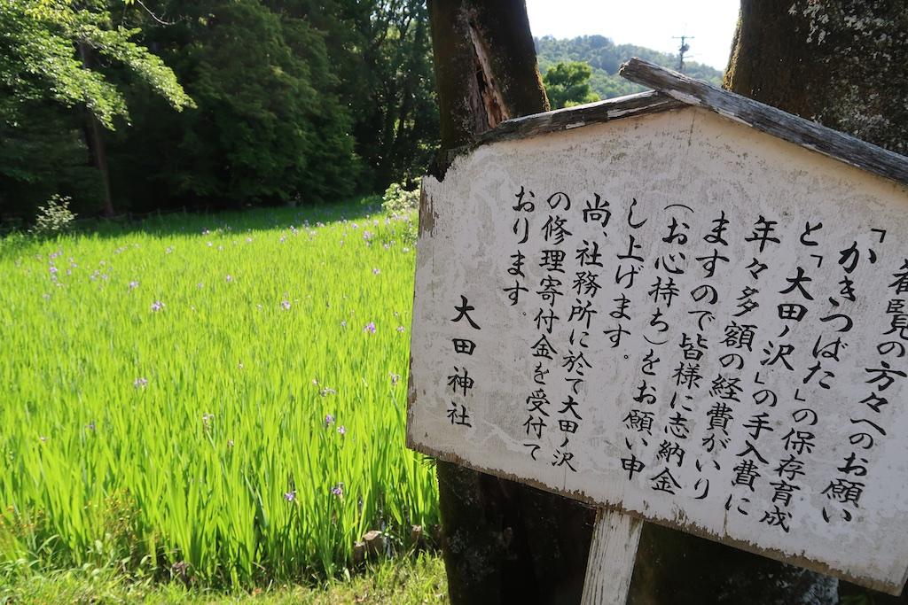 Kakitsu_018