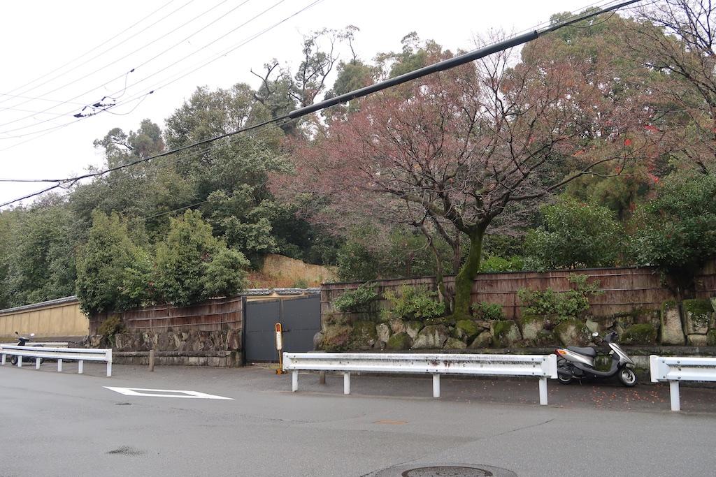 Hushigi_006